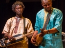 Ngoni (traditional lute) players with Bassekou Kouyate.