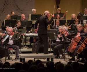 Festival Orchestra 2, featuring Spencer Myer